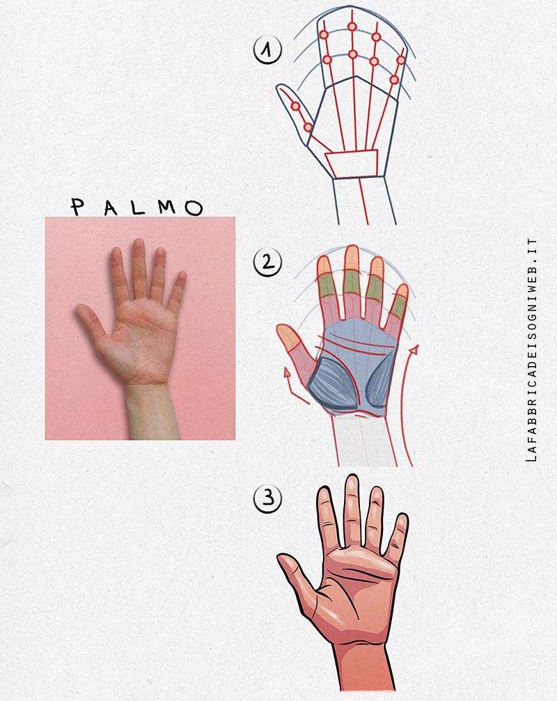 le mani - il palmo