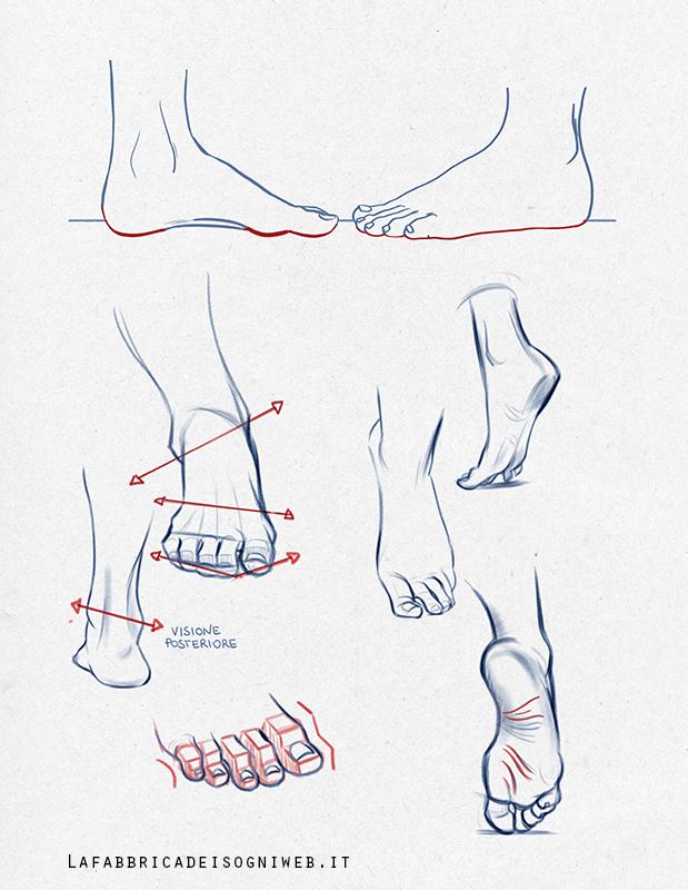 visione laterale dei piedi - esempi disegno